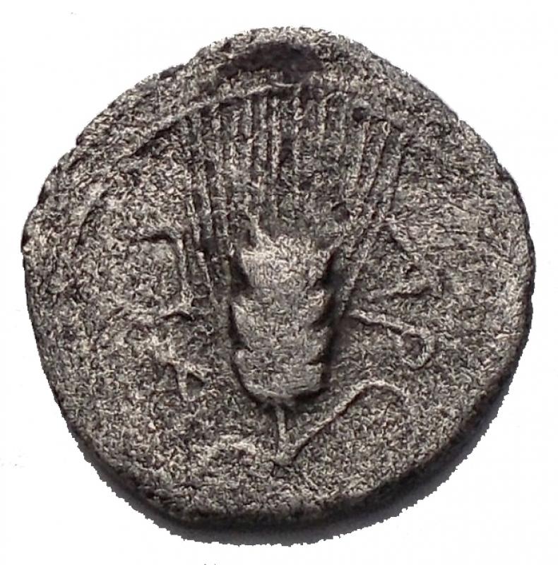 reverse: Mondo Greco - Apulia Arpi (III° secolo a.C.) Obolo. D/ Testa di Athena a sinistra. R/ APΠA. Spiga d orzo. AG. 0.57 gr. Weber I, 421. qBB. RRR. Assente nelle principali sillogi.