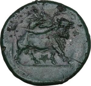 reverse: Samnium, Southern Latium and Northern Campania, Teanum Sidicinum. AE 20.5 mm. c. 265-240 BC