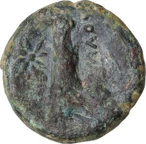 reverse: Northern Apulia, Salapia. AE 16 mm. c. 225-210 BC