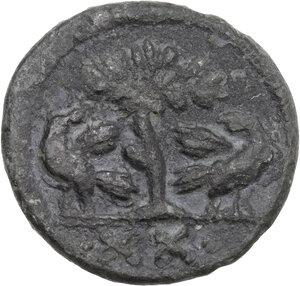 reverse: Ostrogothic Italy, Athalaric (526-534). AE Half Follis. Rome mint, c. 526-534 AD