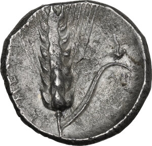reverse: Southern Lucania, Metapontum. AR Stater, c. 340-330 BC