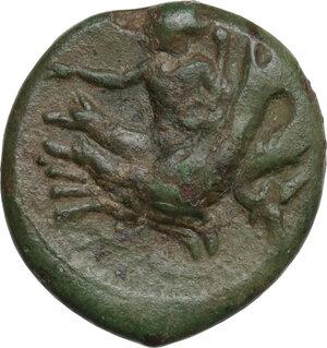 reverse: Bruttium, Scylletium. AE 21 mm, c. 350-325(?) BC